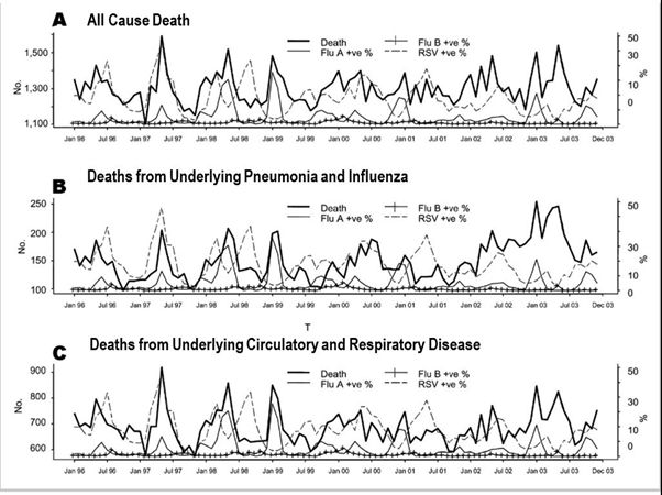 Influenza is responsible for spikes in death rates